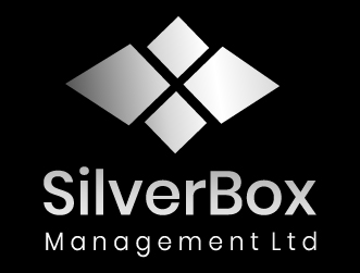 Consulting logo silverbox